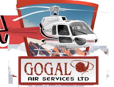 Services   Snow Lake, Manitoba   Gogal Air Services